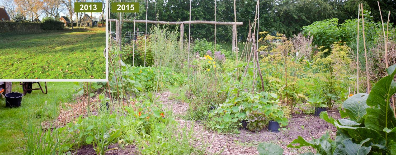 Een tuinontwerp voor je eetbare tuin