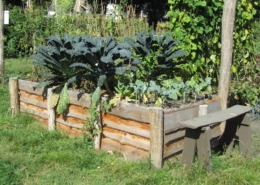 Plan een kijkje in de tuin